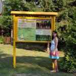 Заповедник Беловежская пуща: информация, что посмотреть, как добраться, где остановиться, фото